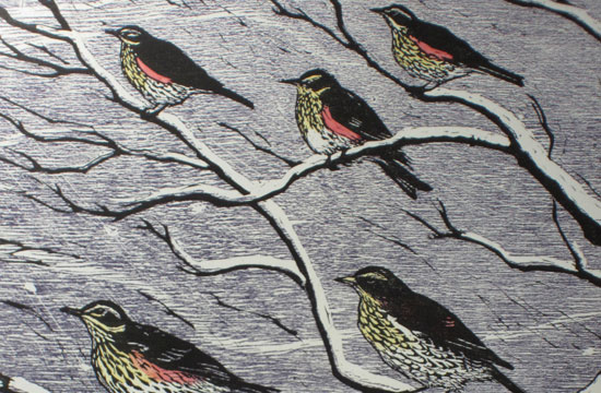 redwings and fieldfares